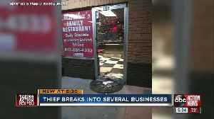 Thief cuts power before vandalizing five Seffner businesses [Video]