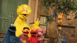 'Sesame Street' Characters, Elmo, Big Bird, Abby Play 'How Well Do You Know? [Video]