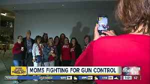 Tampa Bay area moms head to Tallahassee to lobby for gun control laws [Video]