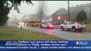 School Bus Slides Off Road, Into Wall In Plum [Video]