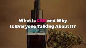 What Is CBD and Why Is Everyone Talking About It? [Video]
