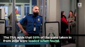 TSA Confiscates Record Number of Firearms in 2018 [Video]