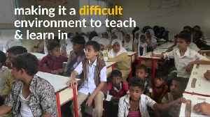 In war-torn Yemen, some students take classes under the tree [Video]