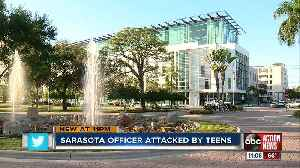 Off-duty Sarasota Police Officer assaulted by group of teens [Video]