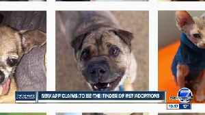 New app claims to be Tinder of pet adoptions [Video]
