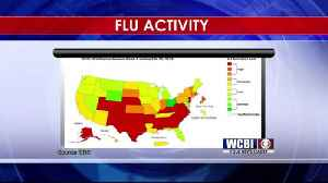 Flu Activity 02/08/19 [Video]
