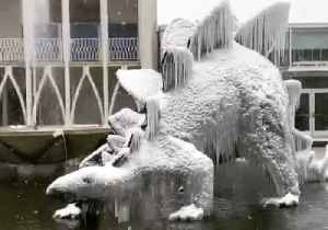 Snowstorm Sends Dinosaur Statues at Seattle Science Center to 'Ice Age' [Video]