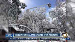 Yosemite national park impacted by winter storms [Video]