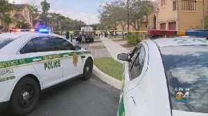 Elderly Woman Stabbed In Domestic Dispute In SW Miami-Dade [Video]