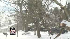 Customers forced to deal with power outages over weekend [Video]