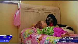 Dog brings hope, relief to little girl with liver disease [Video]