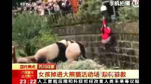 Girl rescued after falling into panda enclosure in southwest China [Video]