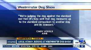 Colorado woman judging at Westminster Dog Show [Video]