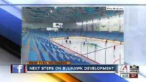 Developer of OP's BluHawk says youth sports are part of driving force for development [Video]