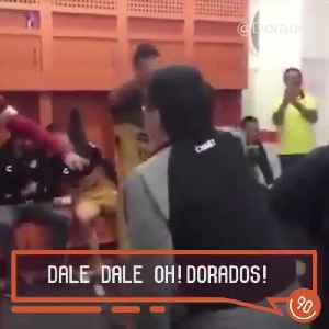 Diego Maradona's post-match celebrations [Video]