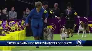 Retired Carmel teacher to judge at Westminster Dog Show [Video]