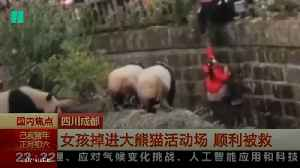 Girl Made Dramatic Escape From Panda Enclosure [Video]
