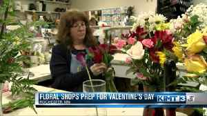 Busy flower sales before Valentine's Day [Video]