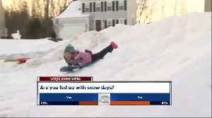 Snow day frustration [Video]