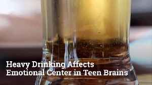 Study Shows Early Age Drinking Causes Brain Damage [Video]
