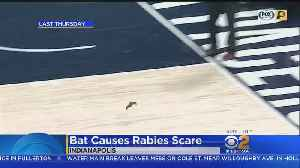 Fans Who Were At Clippers-Pacers Game Urged To Get Checked For Rabies [Video]