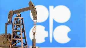 OPEC Output Dropped By 800,000 Barrels A Day In January [Video]