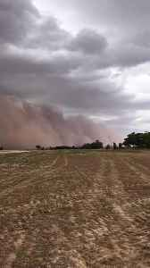 Huge Dust Storm Quickly Rolls Towards Farm Crops [Video]