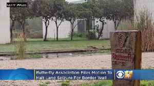 Butterflies Vs. Border Wall? Association Files Motion To Halt Land Seizure In Texas For Border Wall [Video]