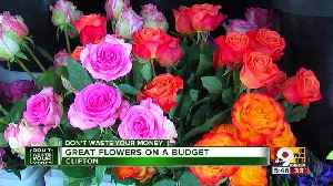 Don't Waste Your Money: Great flower deals on a budget [Video]