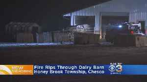 Flames Rip Through Dairy Barn In Honey Brook Township, Chester County [Video]