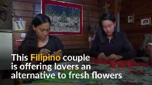 Filipino couple makes everlasting flowers for Valentine's Day [Video]