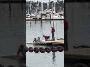 Old Man Dives into Freezing Cold Water to Save Dog [Video]