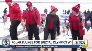 Preview of this weekend's Polar Plunge [Video]