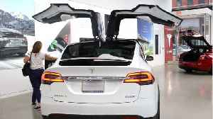 Tesla Unveils 'Dog Mode' For Electric Vehicles [Video]