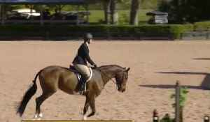 Concerns after equestrian equipment stolen from the Palm Beach Equestrian Center [Video]