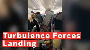 Five Injured as 'Severe Turbulence' Forces Delta Flight to Make Emergency Landing [Video]
