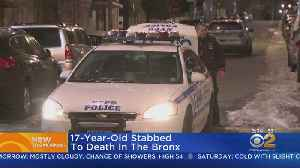 Teen Stabbed To Death In The Bronx [Video]