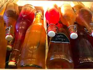 Is Kombucha Really Good for You? [Video]