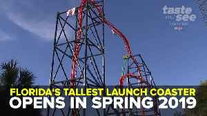 Florida's tallest launch coaster set to open at Busch Gardens in Spring 2019 | Taste and See Tampa Bay [Video]