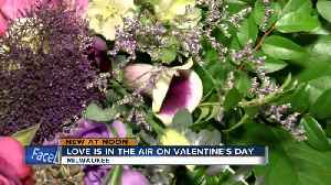 City of Milwaukee feeling the love, celebrating Valentine's day with freebies and weddings [Video]