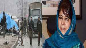 'Border skirmishes and surgical strikes are leading to nothing': Mehbooba on Pulwama | Oneindia News [Video]