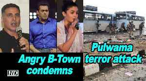 Pulwama terror attack: Angry B-Town condemns this 'cowardly' act [Video]