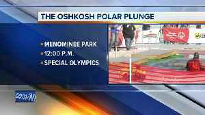 Polar Plunge in Oshkosh to benefit Special Olympics [Video]