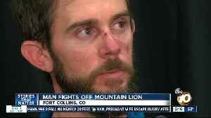 Man describes fighting off, killing mountain lion that attacked him during run
