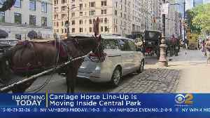 Carriage Horses To Line Up Inside Central Park [Video]