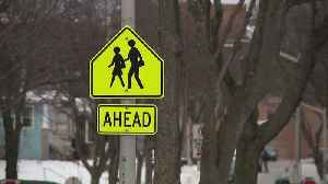 5th-Grader Fights Off Man with Bag of Candy During Attempted Abduction [Video]