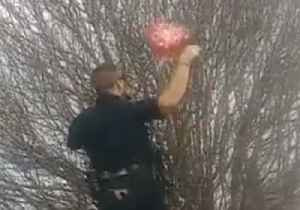 Be Still My Heart: Police Officer Rescues Woman's Balloon on Valentine's Day [Video]