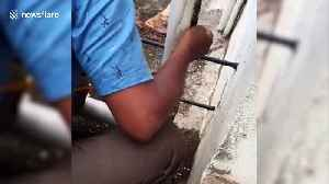 Indian man rescues kitten trapped in washing machine pipe [Video]