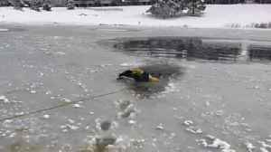 Firefighters rescue dog trapped in ice [Video]