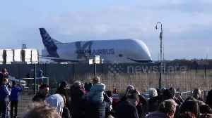 A whale in the sky! Crowd watches as Airbus Beluga XL departs North Wales [Video]